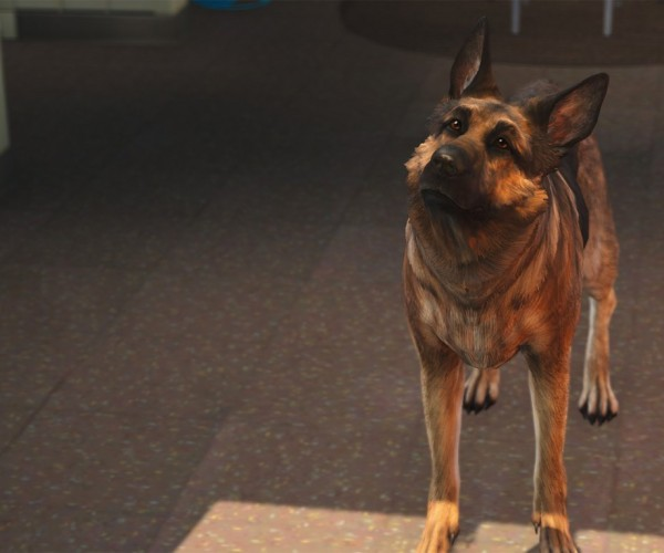 Play Fallout 4 as Dogmeat