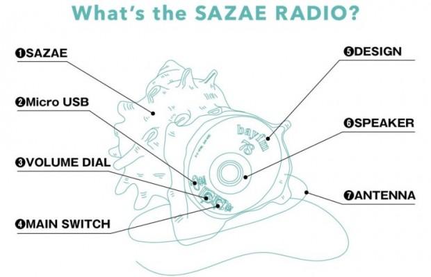 shell_radio_2