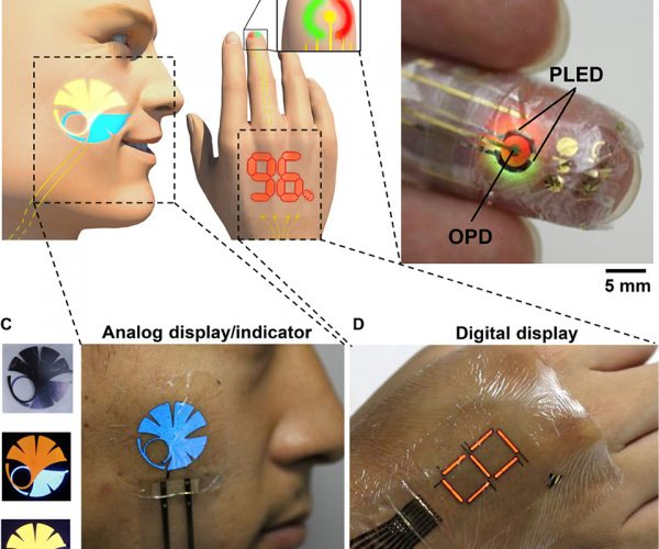 Extremely Thin and Flexible Wearable Electronics: Soft & Smooth Screen