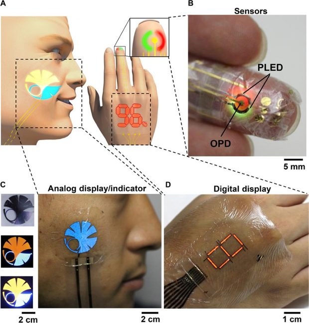 ultrathin_ultraflexible_organic_photonic_skin_by_someya_group_university_of_tokyo_1