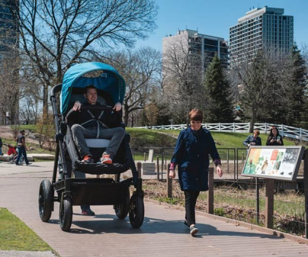 Adult Baby Stroller: You'll Have to Push the Pram a Lot