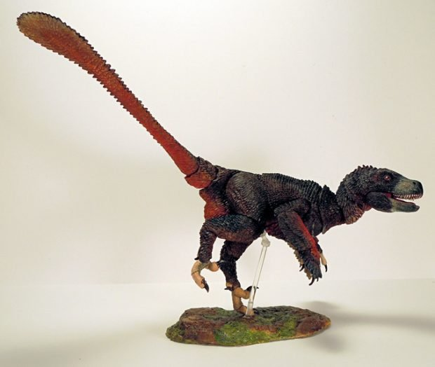 beasts_of_the_mesozoic_scientifically_accurate_dinosaur_figures_by_creative_beast_4