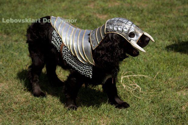 dog_armor_1