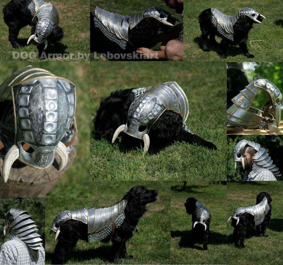 Large Dog Samurai Armor