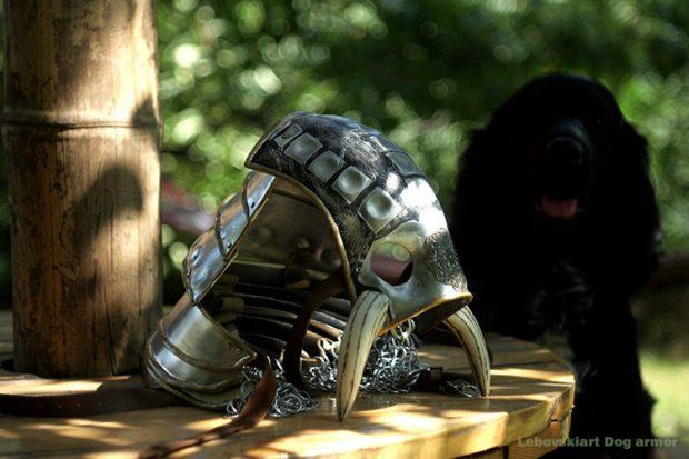 dog_armor_3