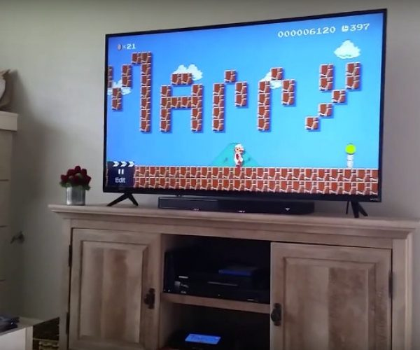 Guy Proposes via Mario Maker, His Princess Was Not in Another Castle