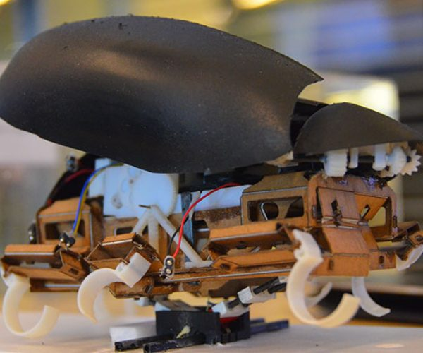 This Robot Roach Can Jump Five Feet High