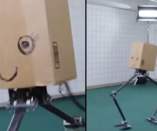 You Can't Unsee This Dancing Robot with Cardboard Head