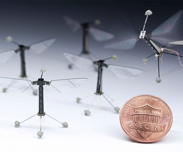 Robobee: The Future of Bee Stings