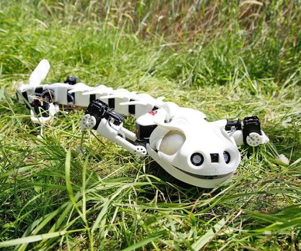 Pleurobot Acts Just Like a Real Salamander