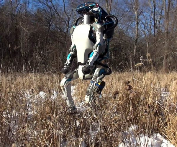 Woman Comes Across Boston Dynamics Walking an Atlas Robot in the Woods