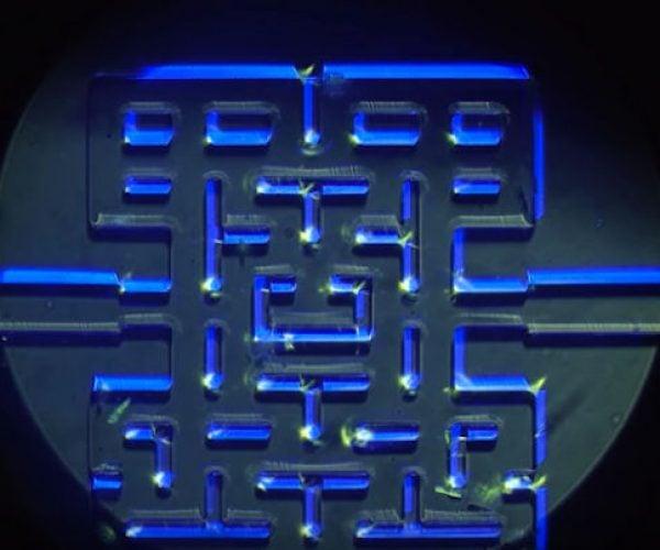 Microorganisms Play in a Pac-Man Maze: Protozoan-Man