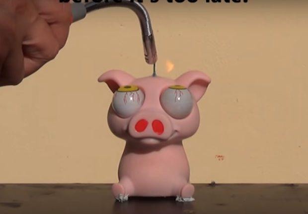 pig_stress_toy_1
