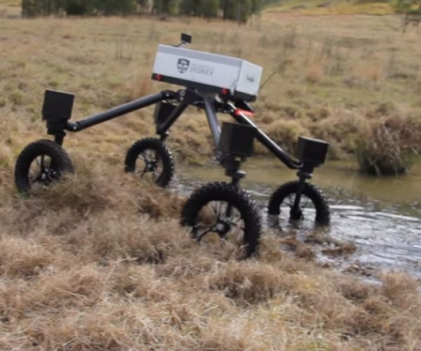 Swagbot Is a Cattle-herding Robot: Bit Along, Little Dogies