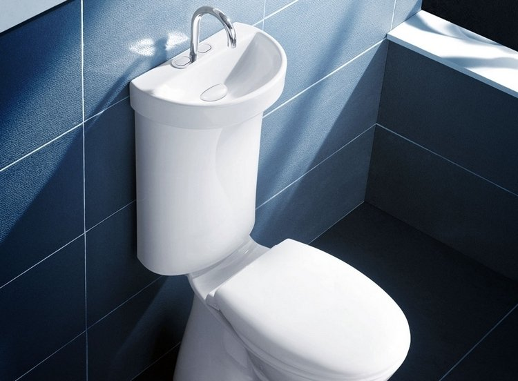 The Home Toilet Sink Just Like In Prison