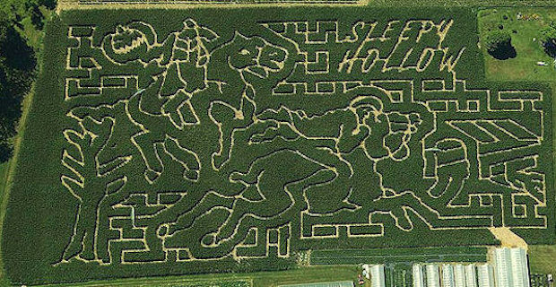 corn_maze_2