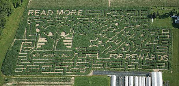 corn_maze_3