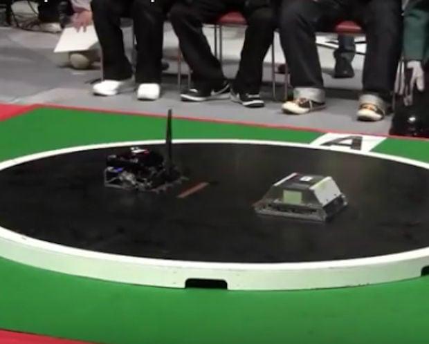 sumo_robots_1