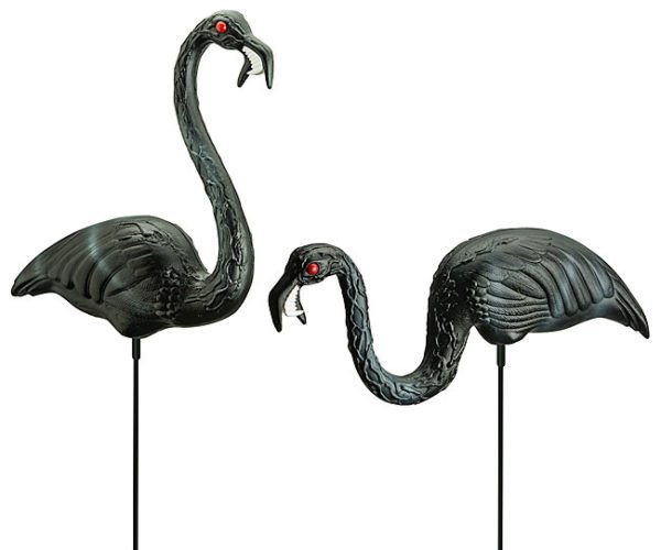 Zombie Flamingos (aka The Squawking Dead)