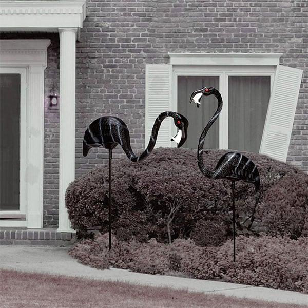 zombi-flamingo-2
