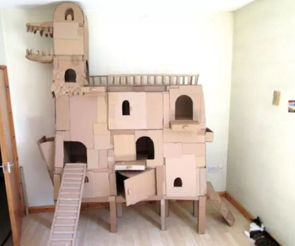 DIY Cardboard Cat Ark Will Save Only Kitties from the Great Flood