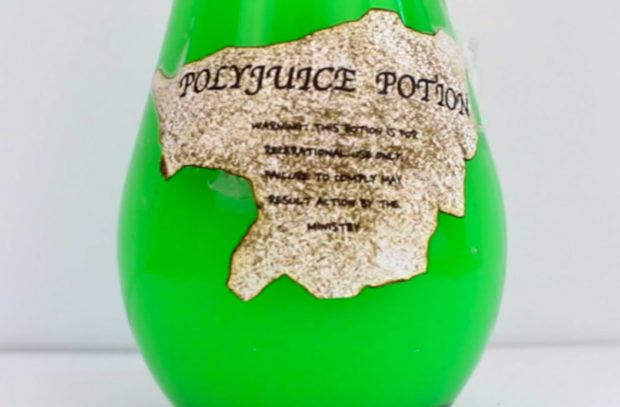 harry_potter_polyjuice_potion_1