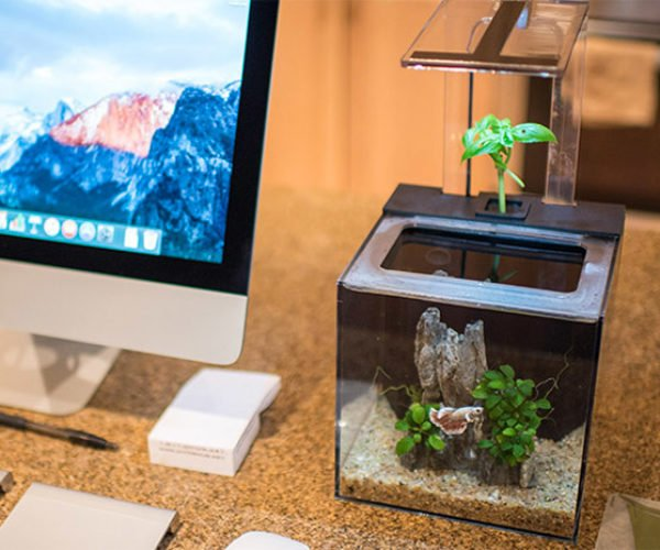 Deal: Save 32% on the EcoQube C Aquarium