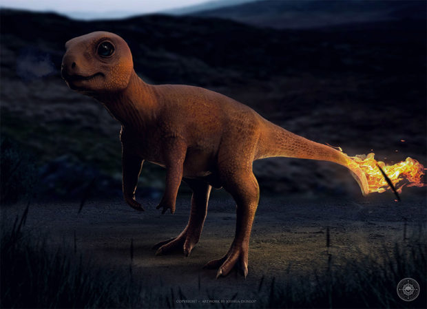 realistic_pokemon_charmander