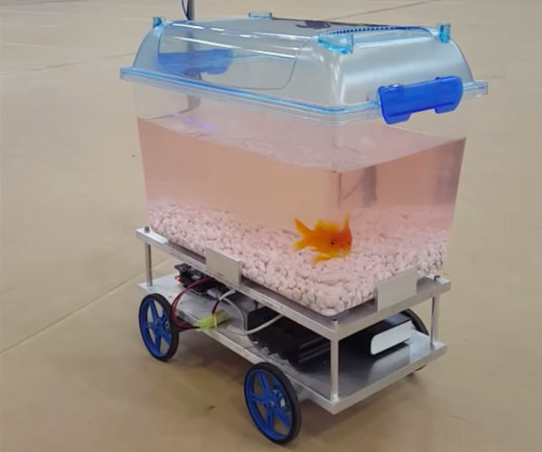 Fish Controls Its Own Robotic Fish Tank