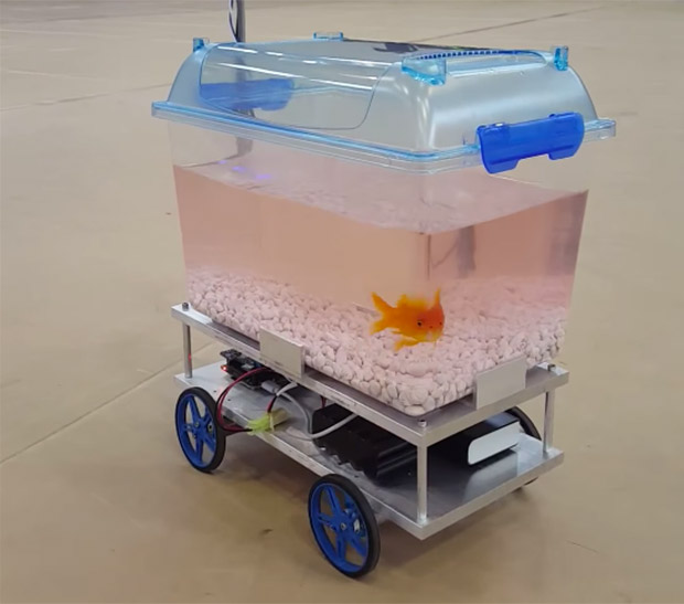 Fish Controls Its Own Robotic Fish Tank Technabob