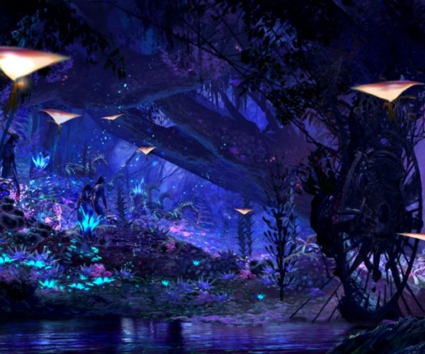 Disney's Avatar and Star Wars Theme Parks Get Opening Dates