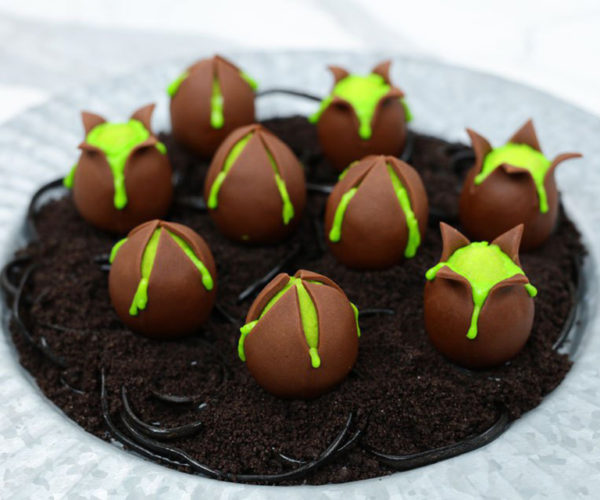 Alien Egg Cake Balls: Kane Eats 'Em Every Day!