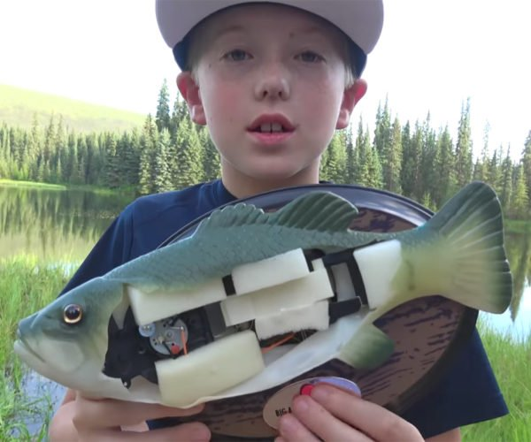 Big Mouth Billy Bass Gets Dissected, and Still Refuses to Die