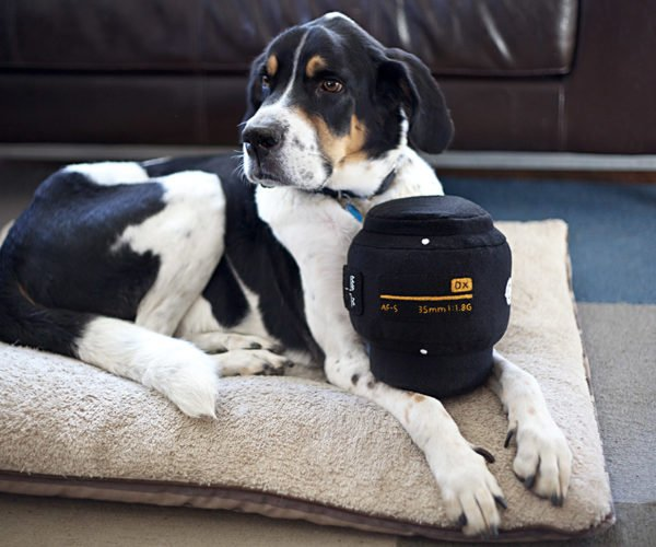 Plush Nikon and Canon Lens Pillows: For Time-lapse Naps