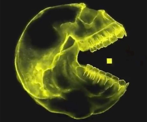 An X-Ray of Pac-Man