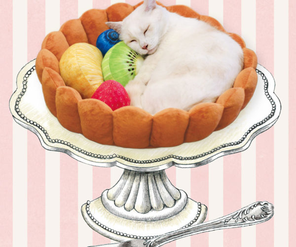 Now Your Cat Can Sleep in a Giant Fruit Tart