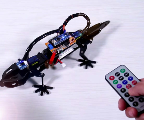 Learn About Robotics with This Bionic Lizard