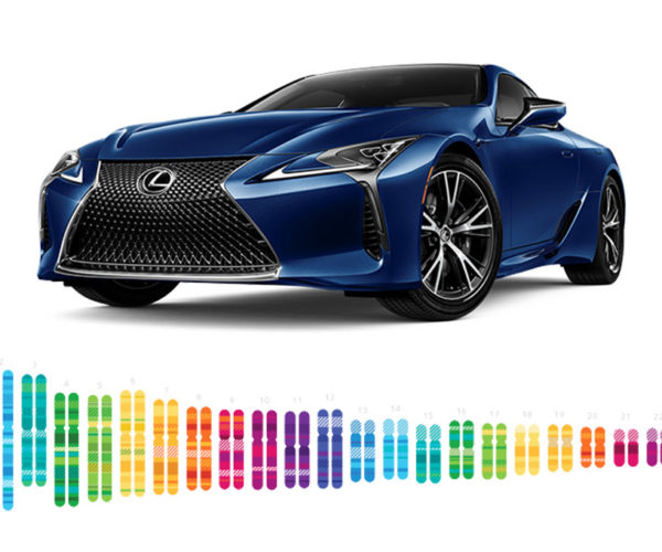 Lexus Genetic Select Customizes Cars Based on Your DNA