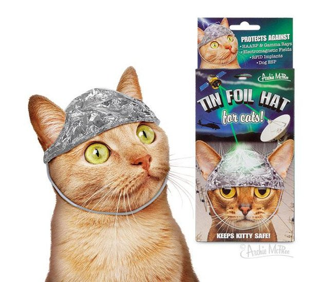 Grab a Tin-foil Hat for You and Your Cat