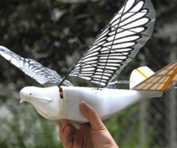 Chinese Spy Drones Camouflaged as Birds