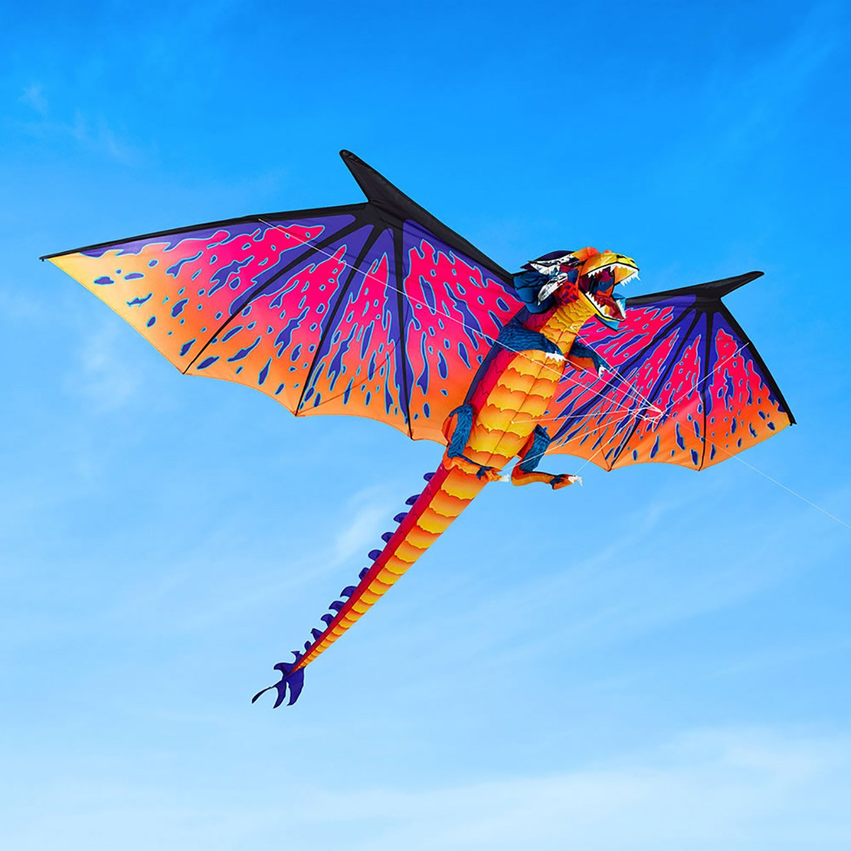 Be The Mother of Dragon Kites