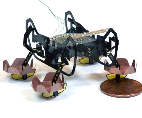 This Tiny Robot Bug Swims and Walk Underwater
