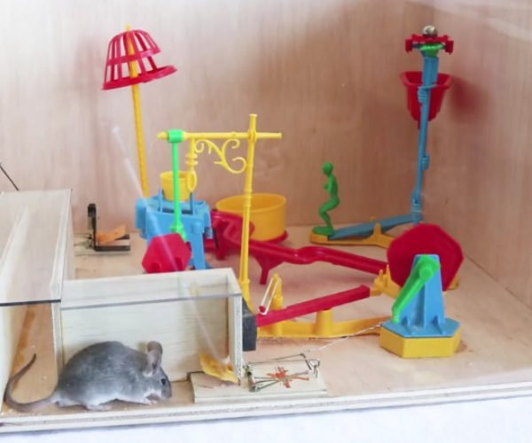 Catching Real Mice with the Mouse Trap Board Game