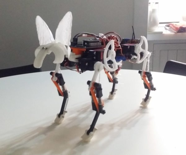 Cat Quadruped Robot: No Litterbox Required
