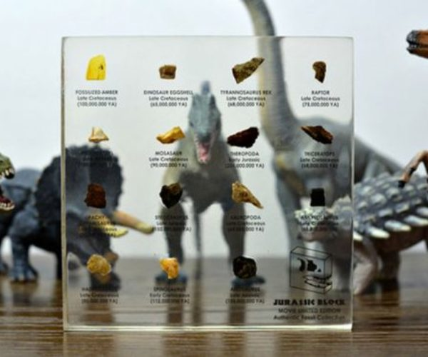 Jurassic Block Puts a Natural History Museum on Your Desk