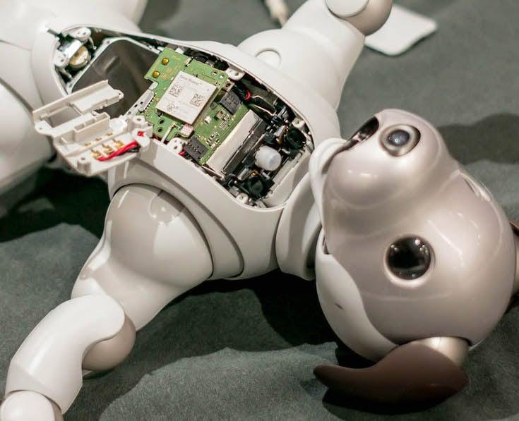 Sony Aibo Robot Dog Teardown Is Like a Grim Scene from a