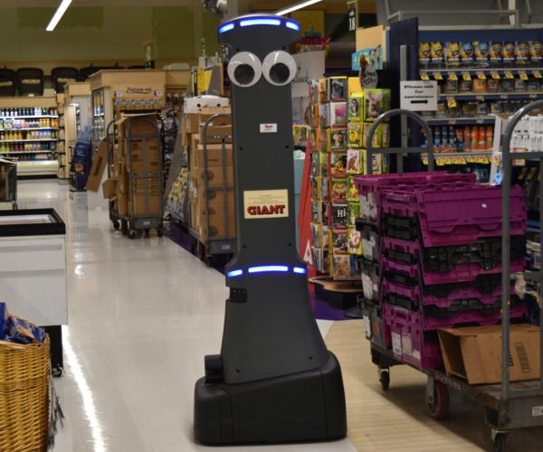 Googly-eyed Robots Are Coming to Grocery Stores