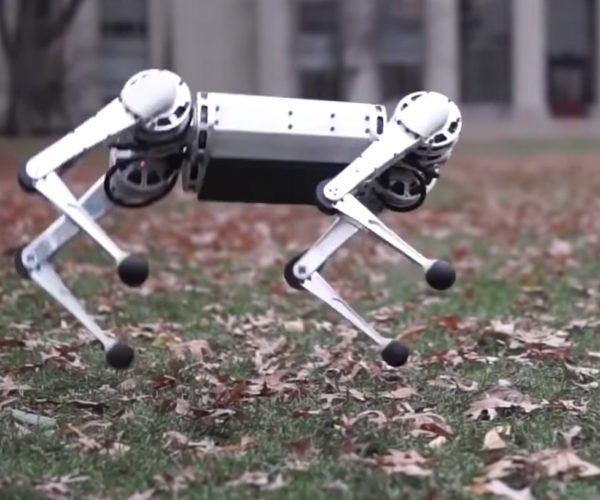 MIT Mini Cheetah Robot Can Do Backflips