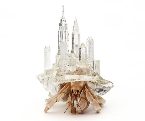 3D Printed Hermit Crab Shells Let Crabs Carry Tiny Cities on Their Backs