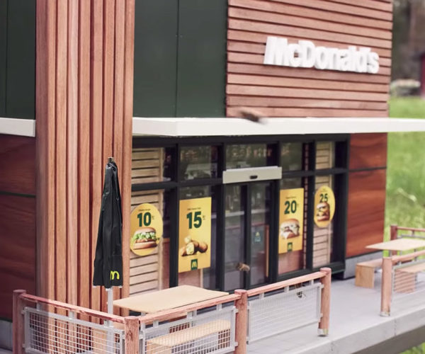 This McDonald's Is Staffed by Bees